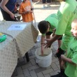 Audobon Center display - boys catching whirlybug beeles in a bucket EDA 2017