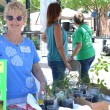 Master Gardeners giving away plants at their exhibit - EDA 2017
