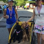 Runners and dogs in cart after People Chase 5K Fun Run - EDA 2017