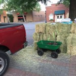 Straw bales and red bud tree seedlings arrive early - EDA 2017